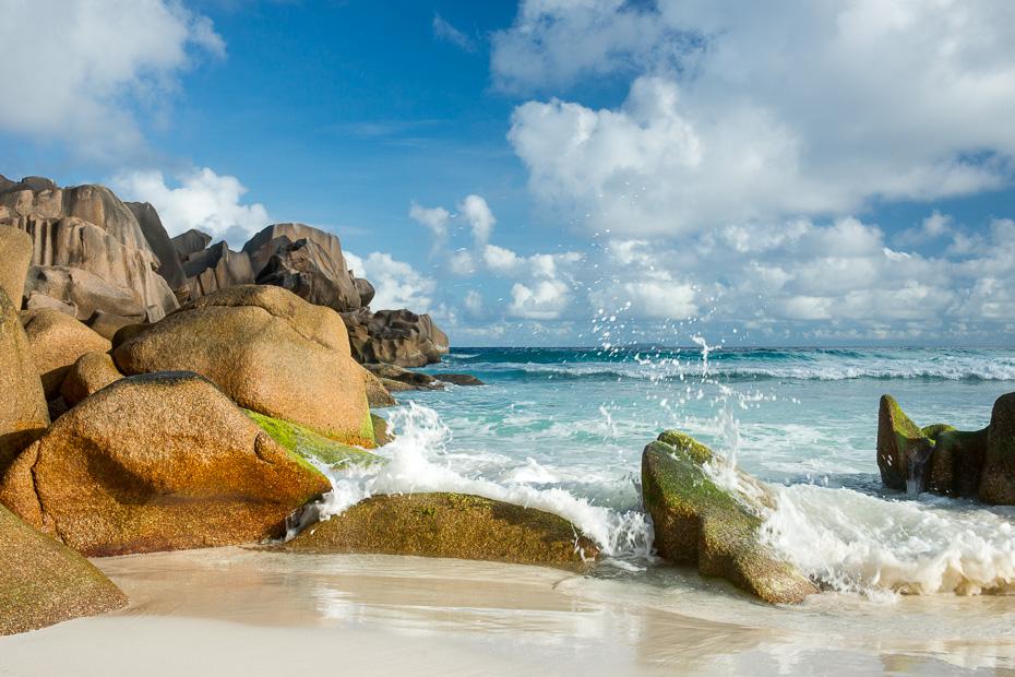 gliemezvaki seiseli krabji udens pludmale sala ladiga anse sezona lietus