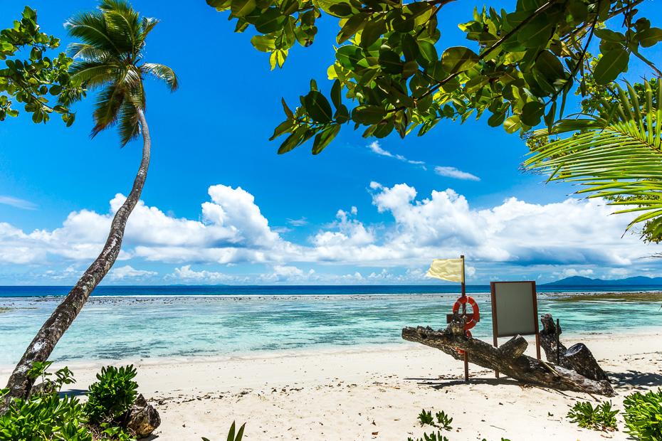 seiseli kazas medusmenesis paradize neticami pasakaina atputa makoni pludmale siluete hilton labriz viesnica brivdienas atvalinajums siltums glabeji drosiba