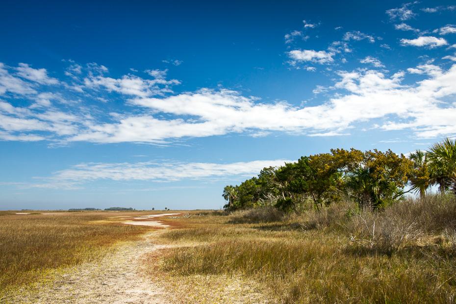 st marks rezervāts amerika florida putni daba ceļojums ar auto ko apskatīt