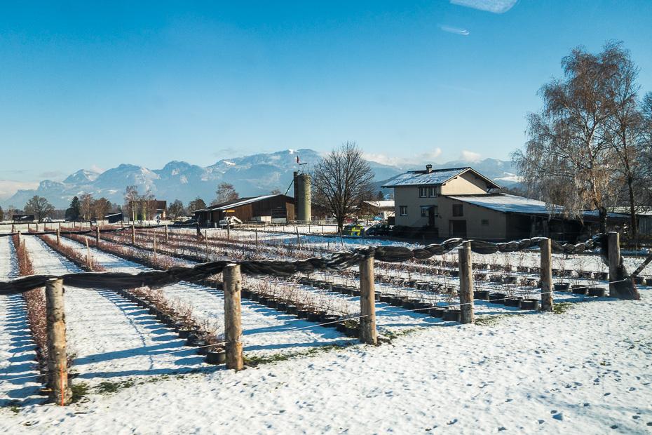 vilciens skats ziema kalni sveice lihtensteina dzelzcels vadca