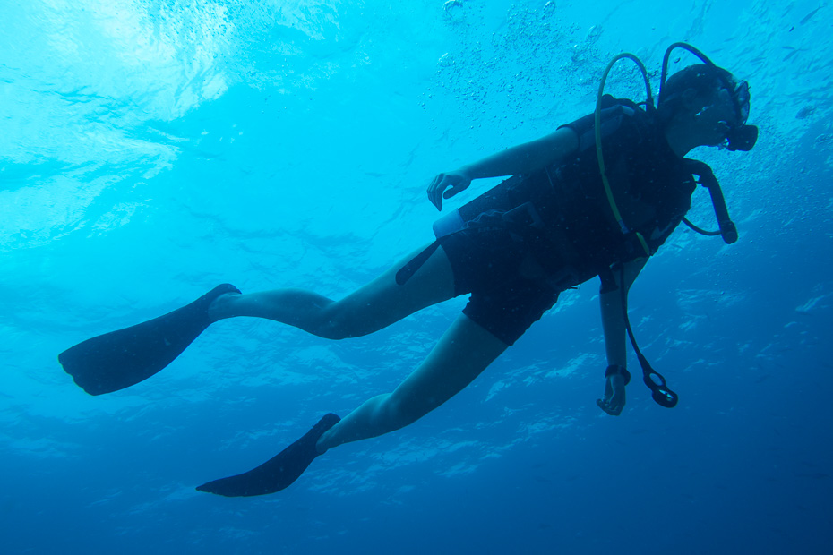 daivings seiseli indijas okeans la diga ave maria