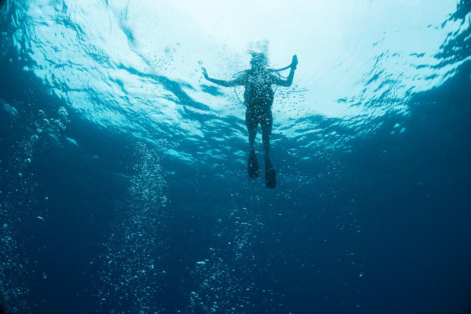 daivings seišelas niršana aowd indijas okeāns