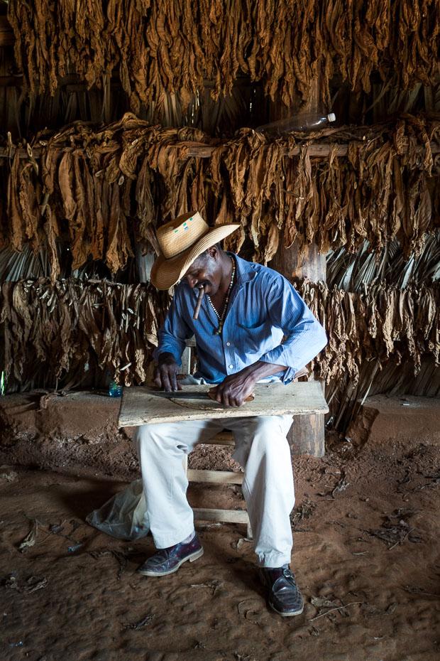 cigāri kuba tabaka