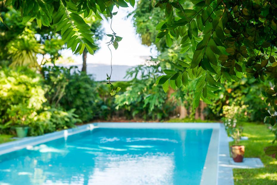 baseins hemingveja amerika asv florida floridakīza sala laims