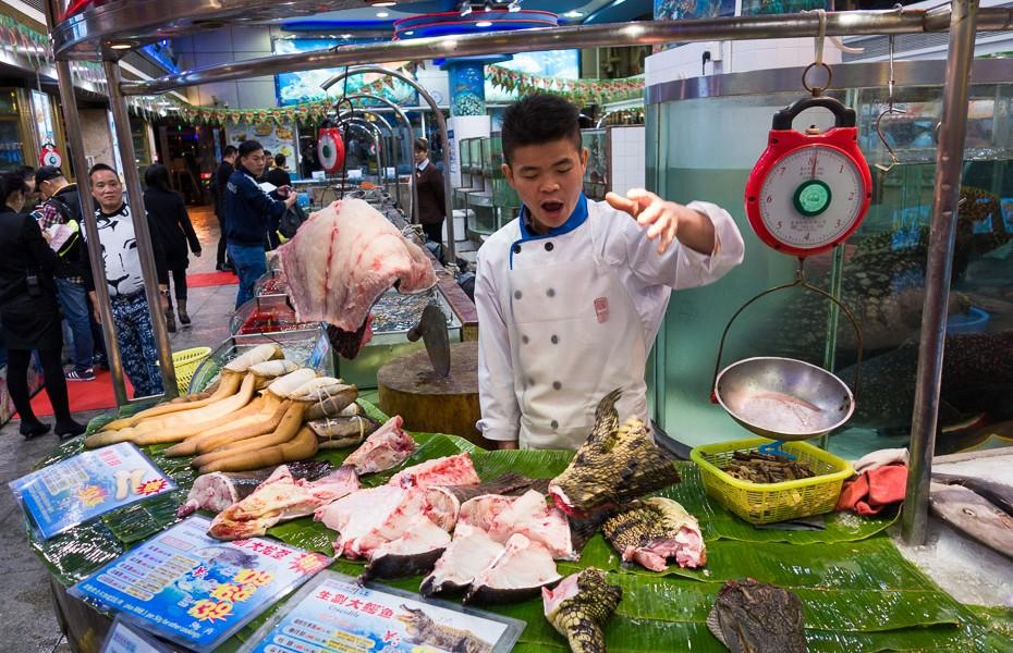 Hongxing ķīniešu ēdiens krokodils
