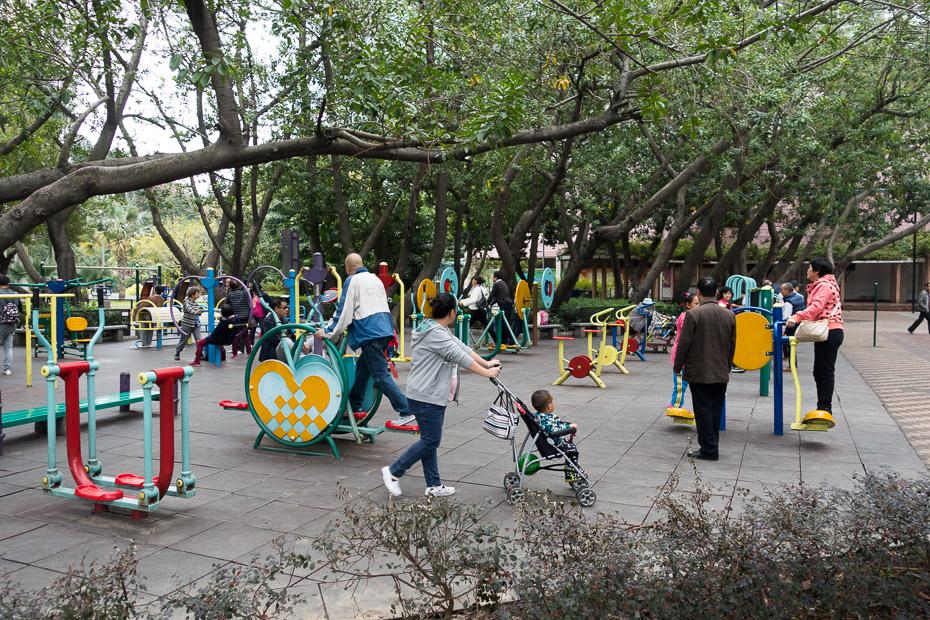 parks ķīnieši vingro elipteris
