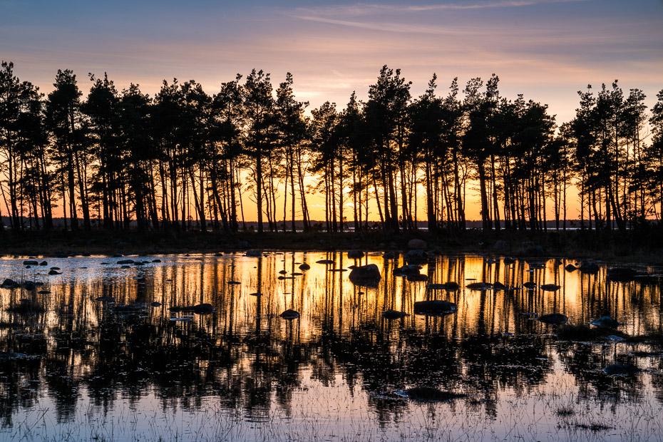 Spa atvaļinājums Igaunijā ar ģimeni