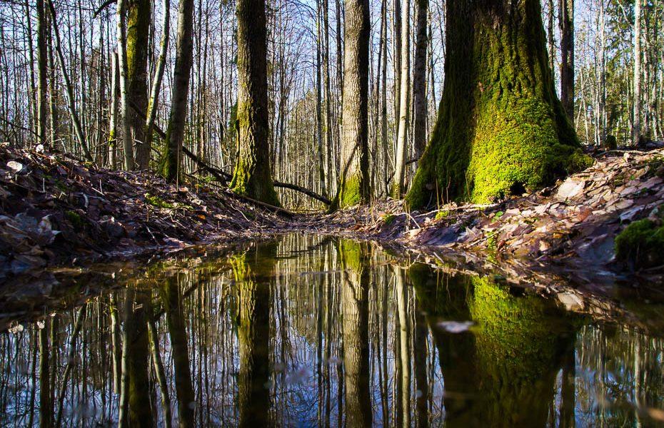 Divu dienu izbrauciens pa labākajām Kurzemes dabas takām
