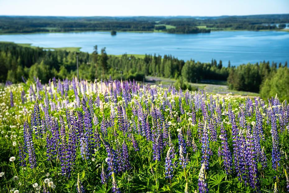 Messilä slēpošanas kūrorts Somijā