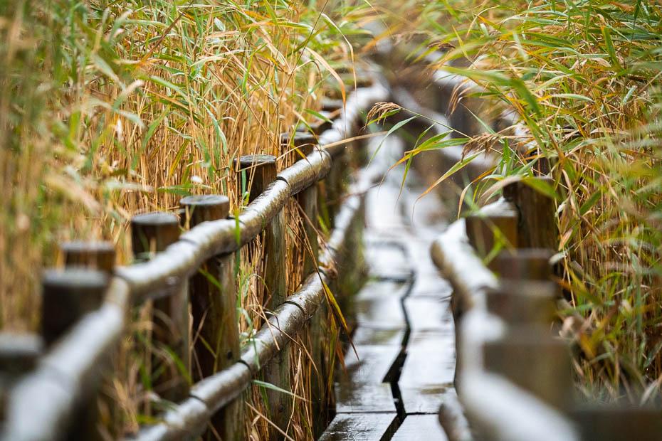 Kaņiera ezers rudenī