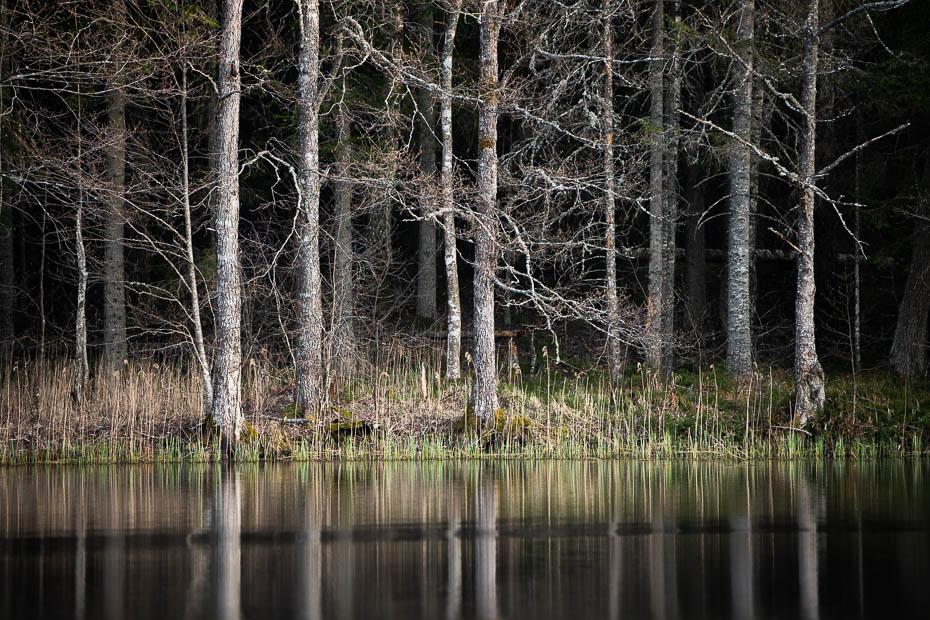 Kokšu ezeru taka