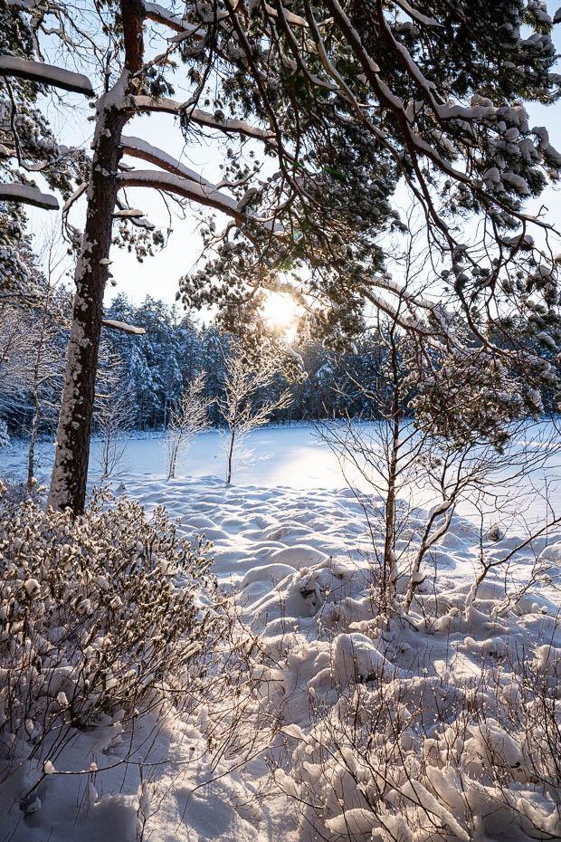 Lejas ezers Daugmales pagastā apskates vietas Latvijā ziemā