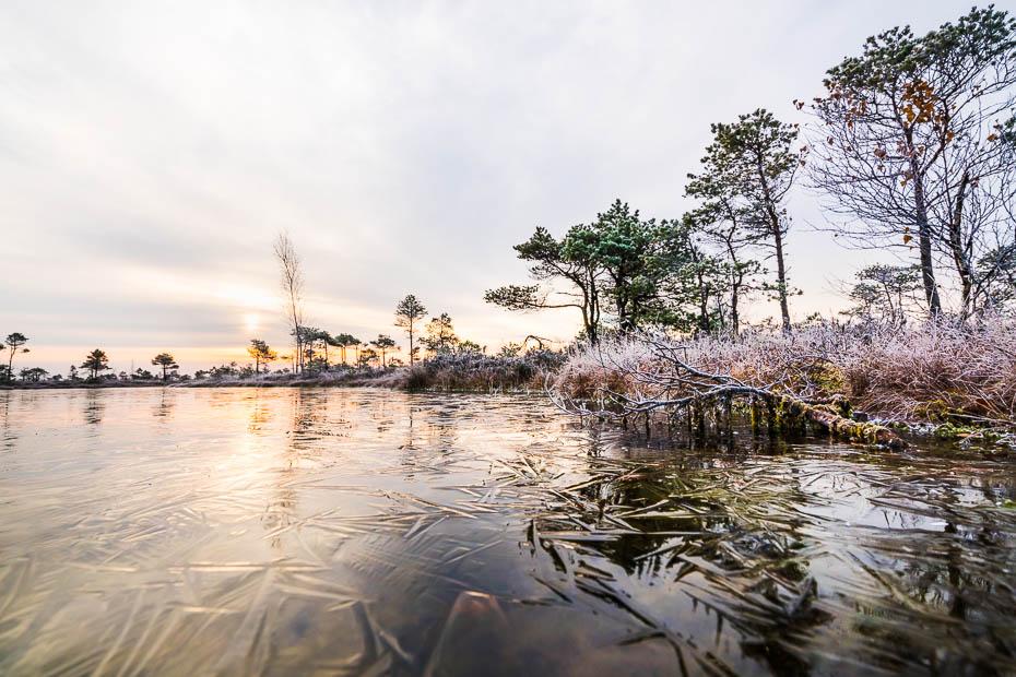 Ķemeru nacionālais parks ziemā