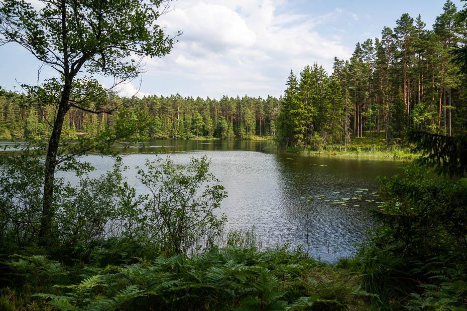 Dziloņa ezers telts vietas