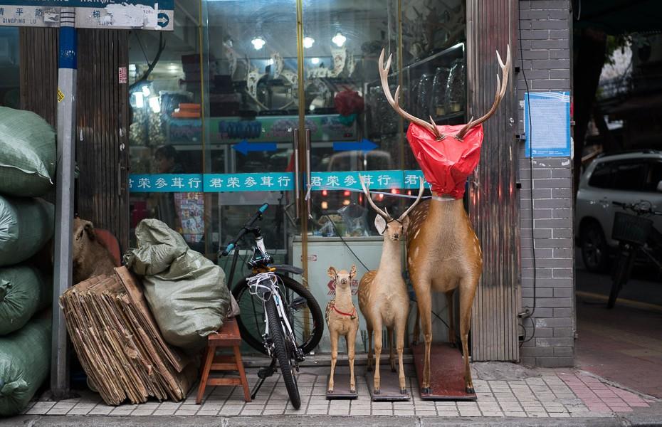 ķīniešu tirgus qingping ieliņa