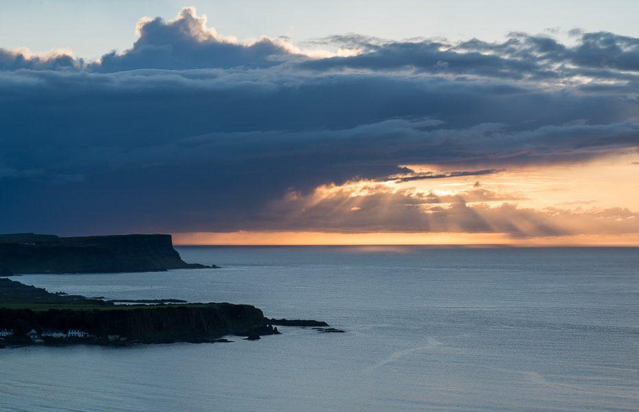 saulriets ziemeļīrijā