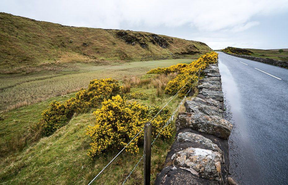 skaistā daba īrijā
